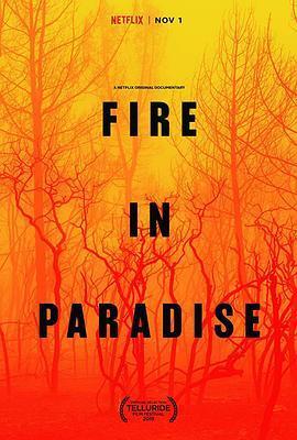天堂镇大火 Fire in Paradise