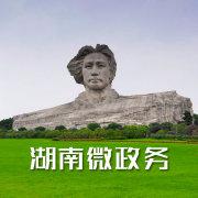 湖南微政务