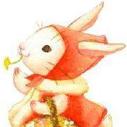奔走的长毛兔