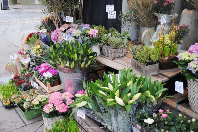 开一家美丽的花店