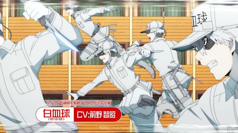TVアニメ第2期「はたらく細胞!!」2021年1月放送開始! _ 第1弾PV.mp4_000011.690