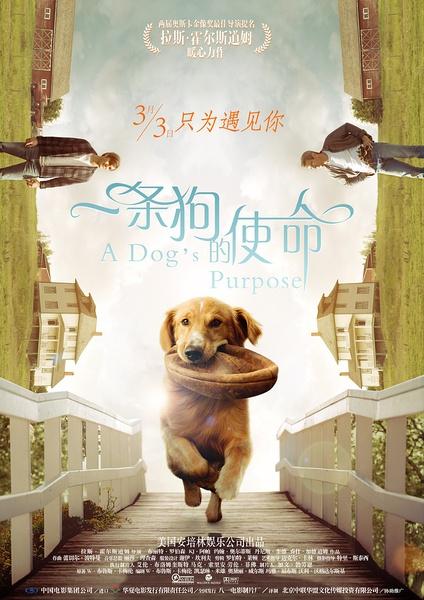 一条狗的使命 A Dog's Purpose
