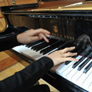 PianoPro音乐学校