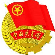 共青团广安市委