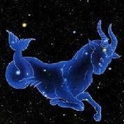 摩羯座星座秘語