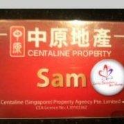 中原地产新加坡Sam李