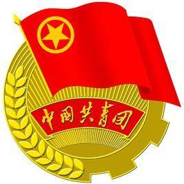 滁州城市职业学院团委