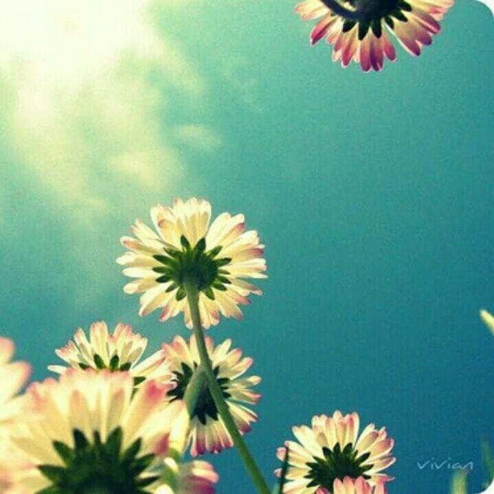 心有多远,你就能走多远,做一个温暖的人,浅浅笑,轻轻爱。