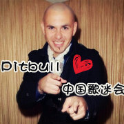 Pitbull_Dale