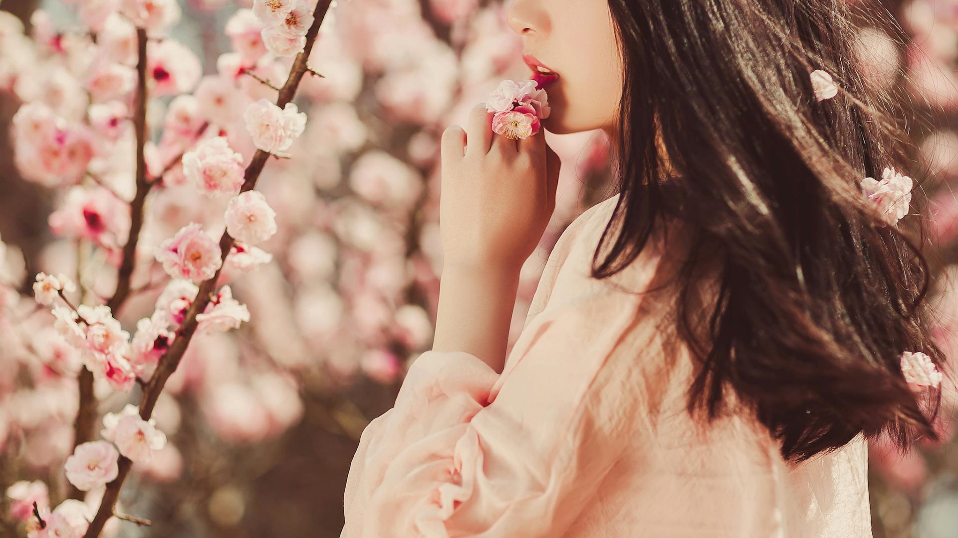 春天在哪里简谱