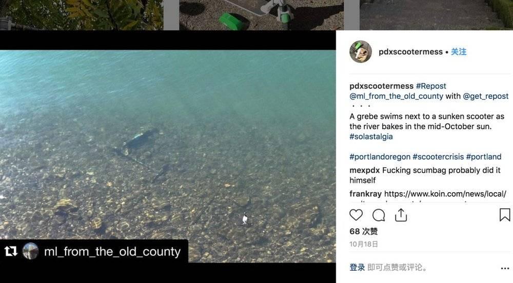 愤怒的美国老铁把共享电动滑板车抛进了大海的照片 - 5