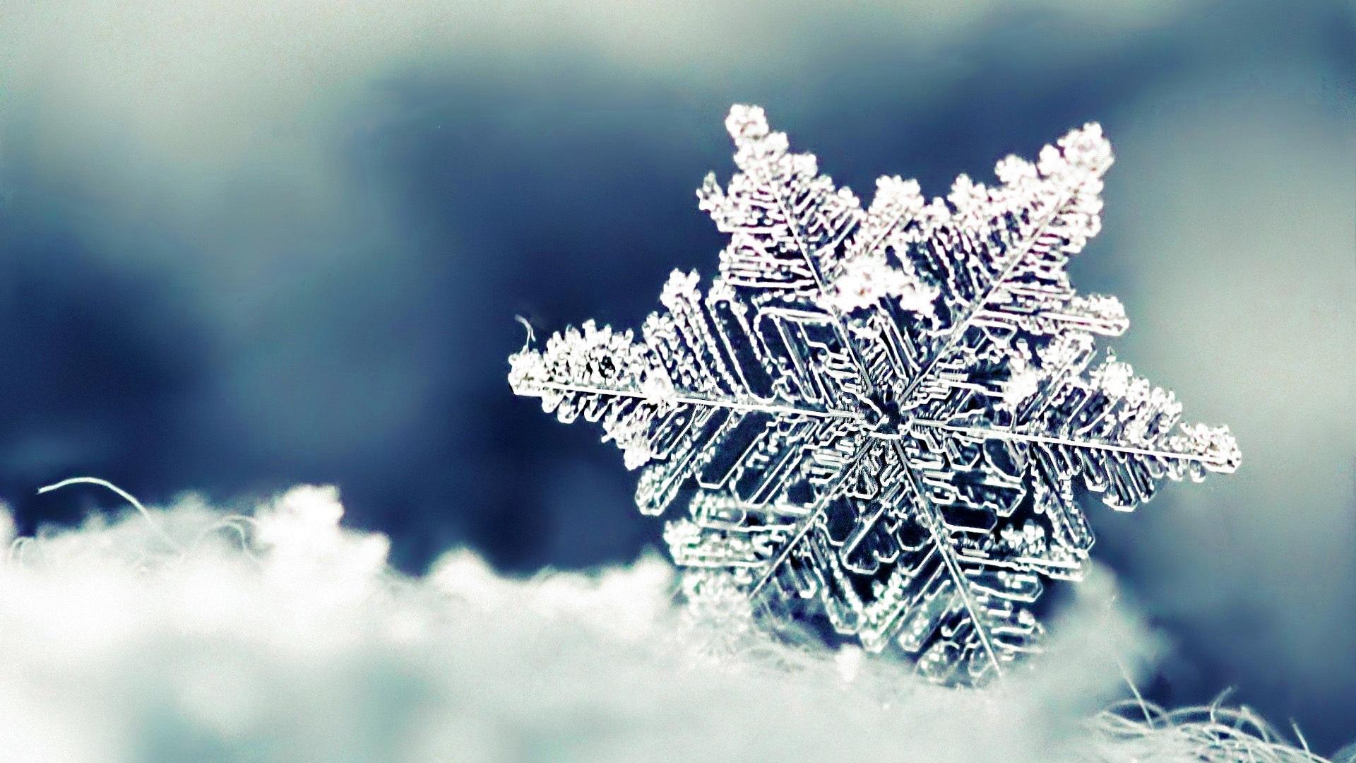 冬日斜阳浅浅 风雪婆娑 你是我最初の奇迹 纯音乐的照片 - 3