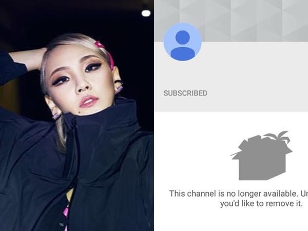 DARA转发支持CL个人新YouTube频道,粉丝感动大呼DARA也赶快离开YG插图1