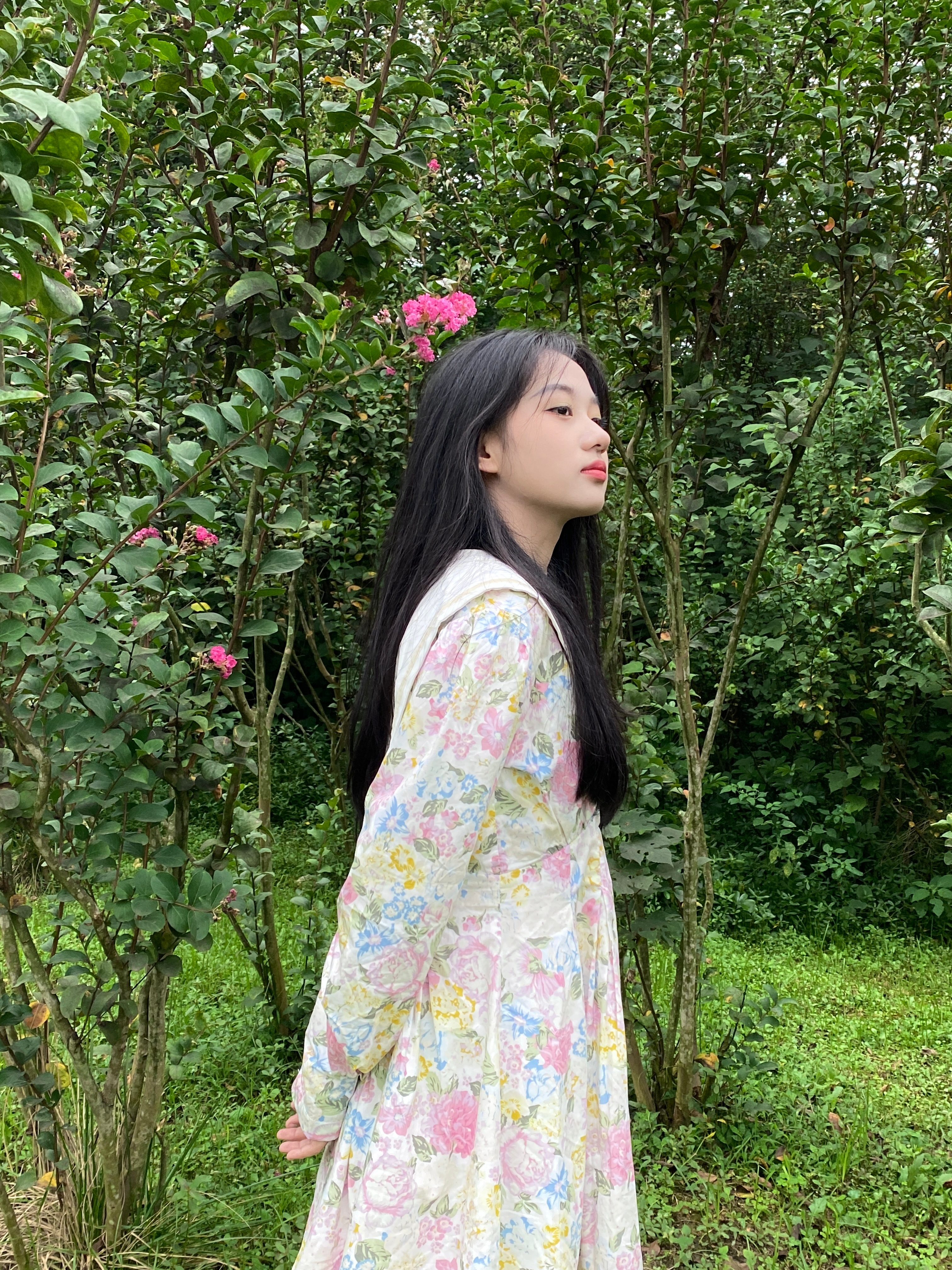 公主日记斯人若彩虹 我是真的很喜欢带花花...美女