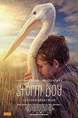 《鹈鹕的故事》完整版高清视频免费在线观看