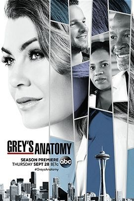 实习医生格蕾 第十四季的海报