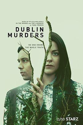 都柏林凶案的海报