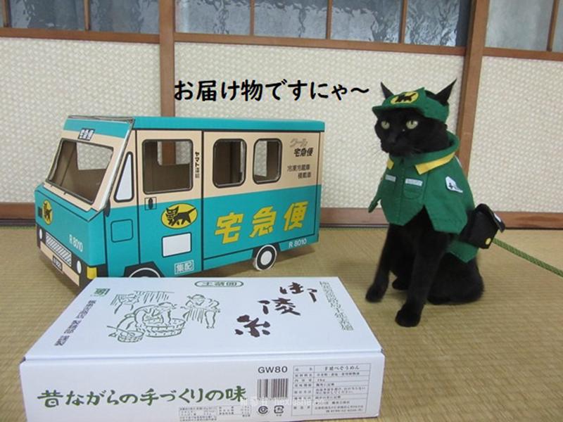 日本黑猫动画角色COS_和邪社10