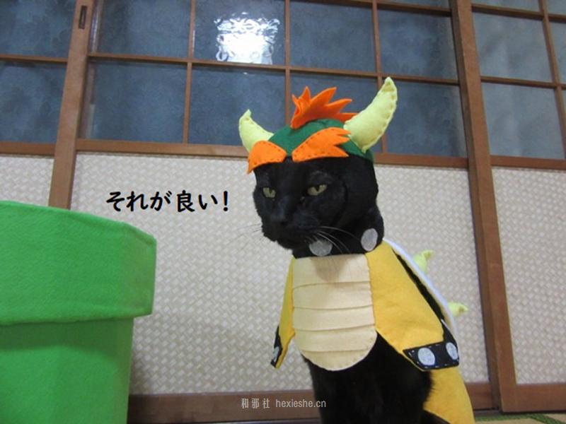 日本黑猫动画角色COS_和邪社15