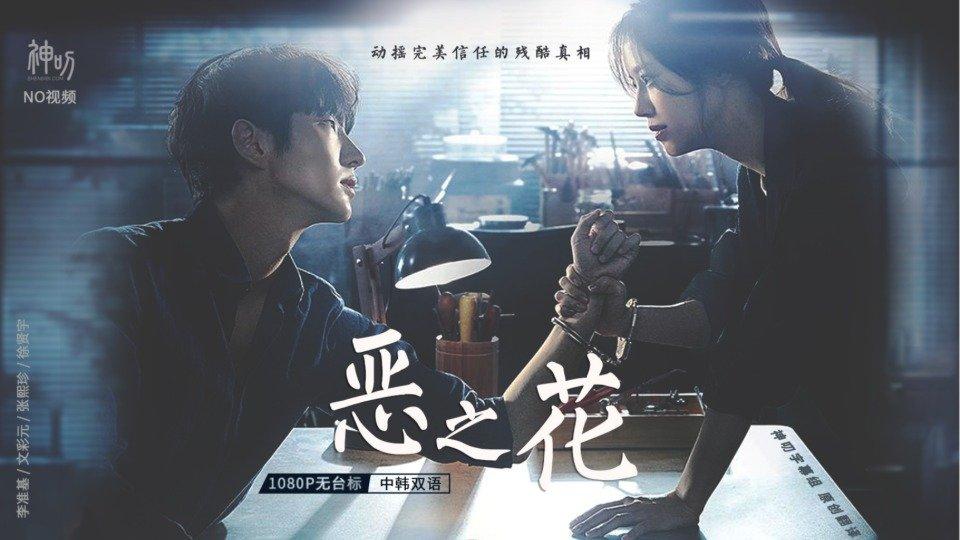 【2020韩剧】恶之花【中韩双语】【1080P】【神叨字幕组】