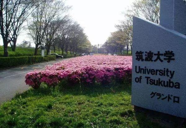 日本大学排名前10 都有哪些大学以及和国内大学相比都有什么特点 (9)