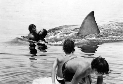 定义「强档大片」、污名化鲨鱼形象,《大白鲨》系列全四集电影历史分析-MP4吧