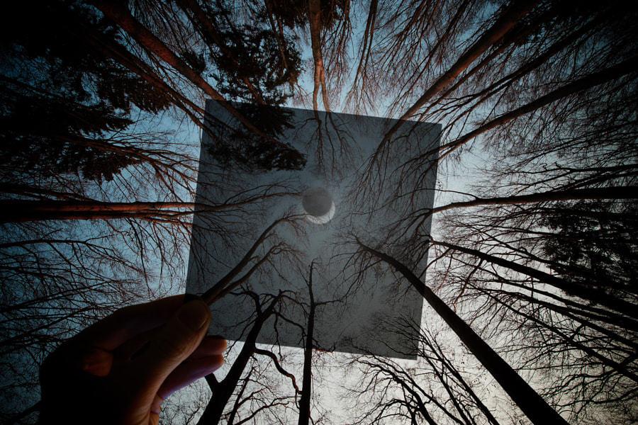 0087Izpsly4gunvdjium0j60p00go42r02 22张超漂亮的月亮相片