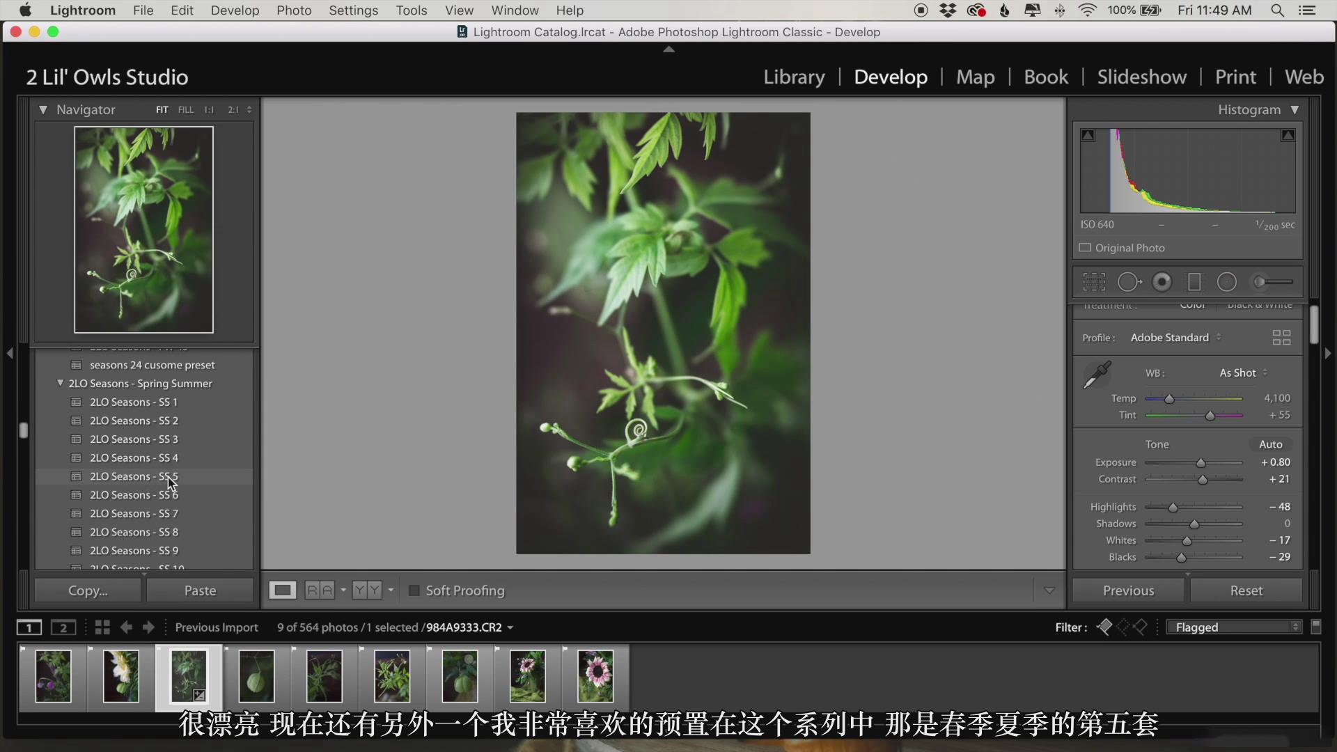 摄影教程_Lenslab –静物花卉产品摄影掌握色彩突破艺术界限研讨会-中文字幕 摄影教程 _预览图32