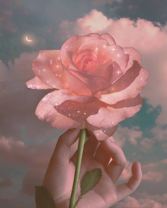 晚安心语精彩语句:爱别人不一定有回报,爱自己肯定有