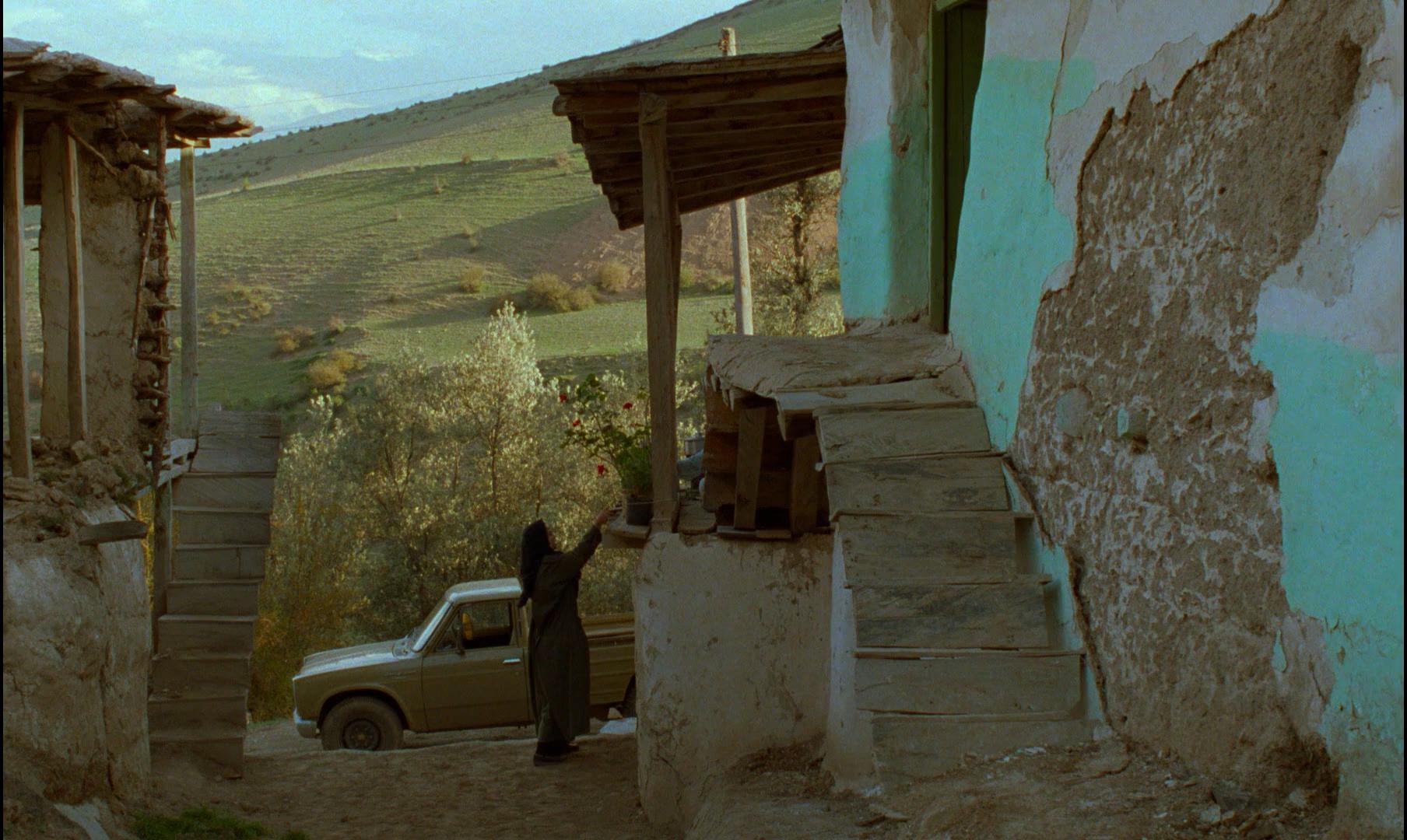 影视资讯静谧之美阿巴斯《橄榄树下的情人》...