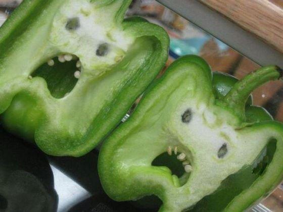原来辣椒们的内心都是很恐惧的啊~