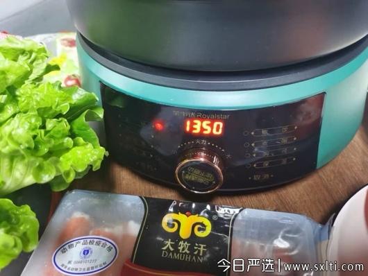 荣事达电火锅质量怎么样,荣事达电火锅多少钱,荣事达RHG-M40W电火锅