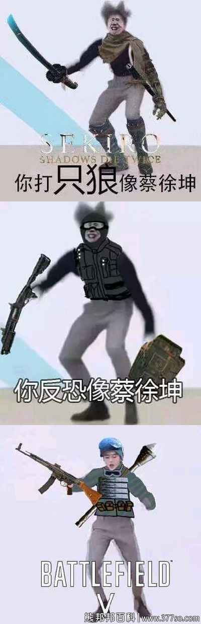 真像蔡徐坤是什么梗5
