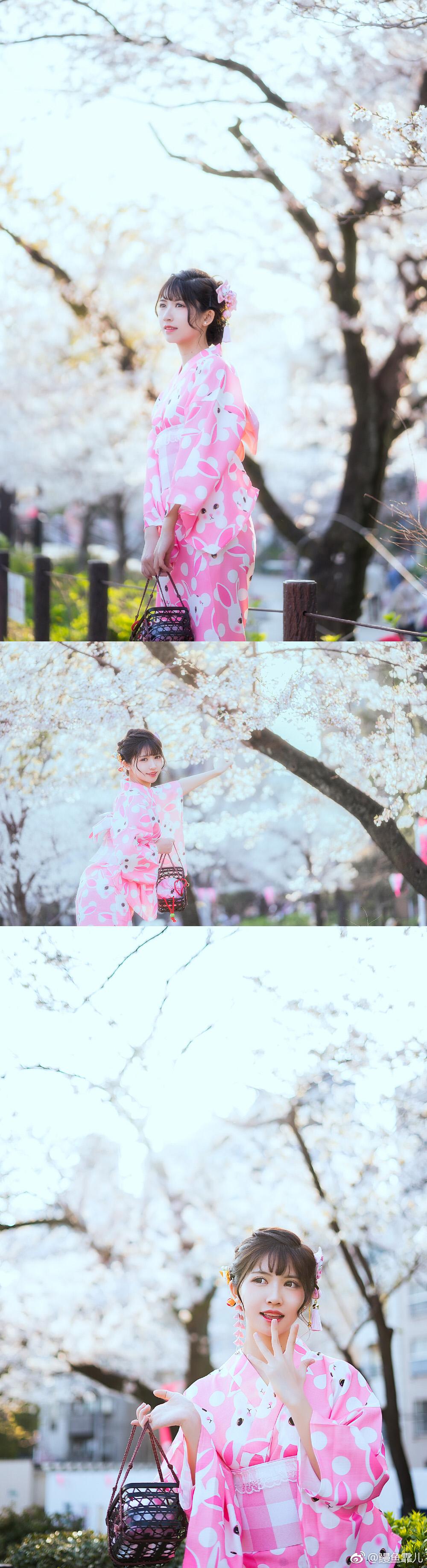 还记得樱花正开,还没懂跟你示爱…插图8