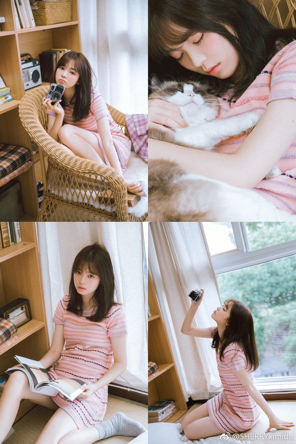 想打包一份慵懒给你 像秋天沙发里的小猫插图6
