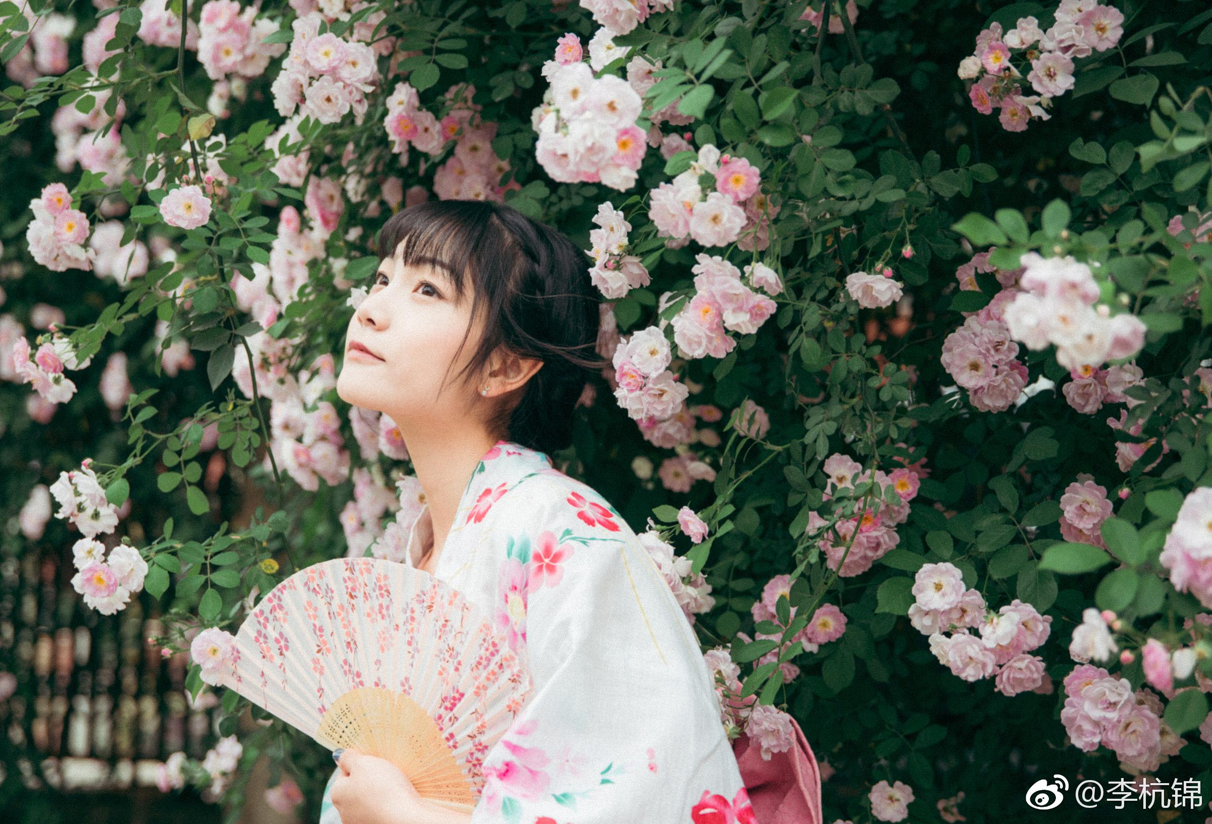 蔷薇与你插图