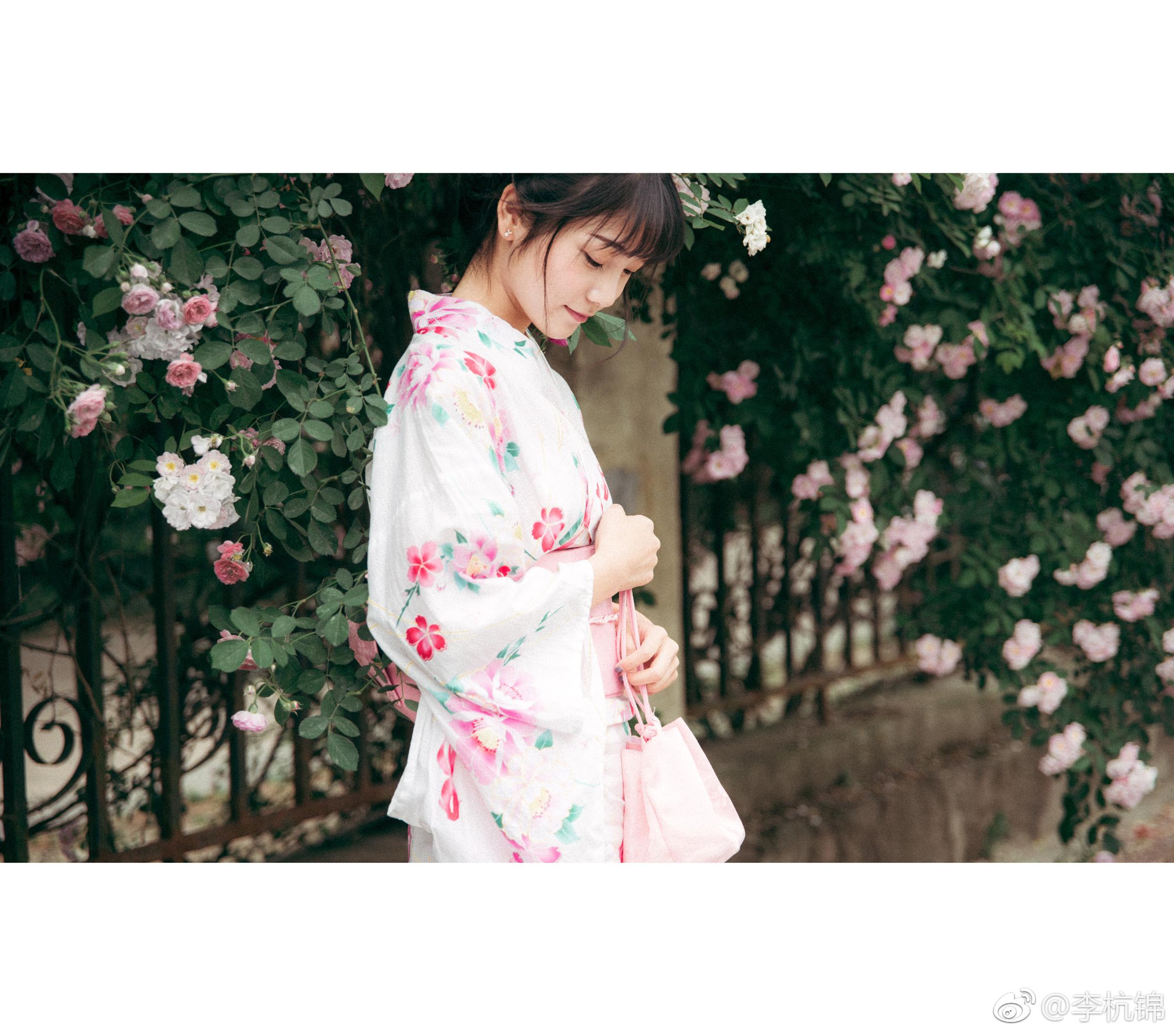 蔷薇与你插图4