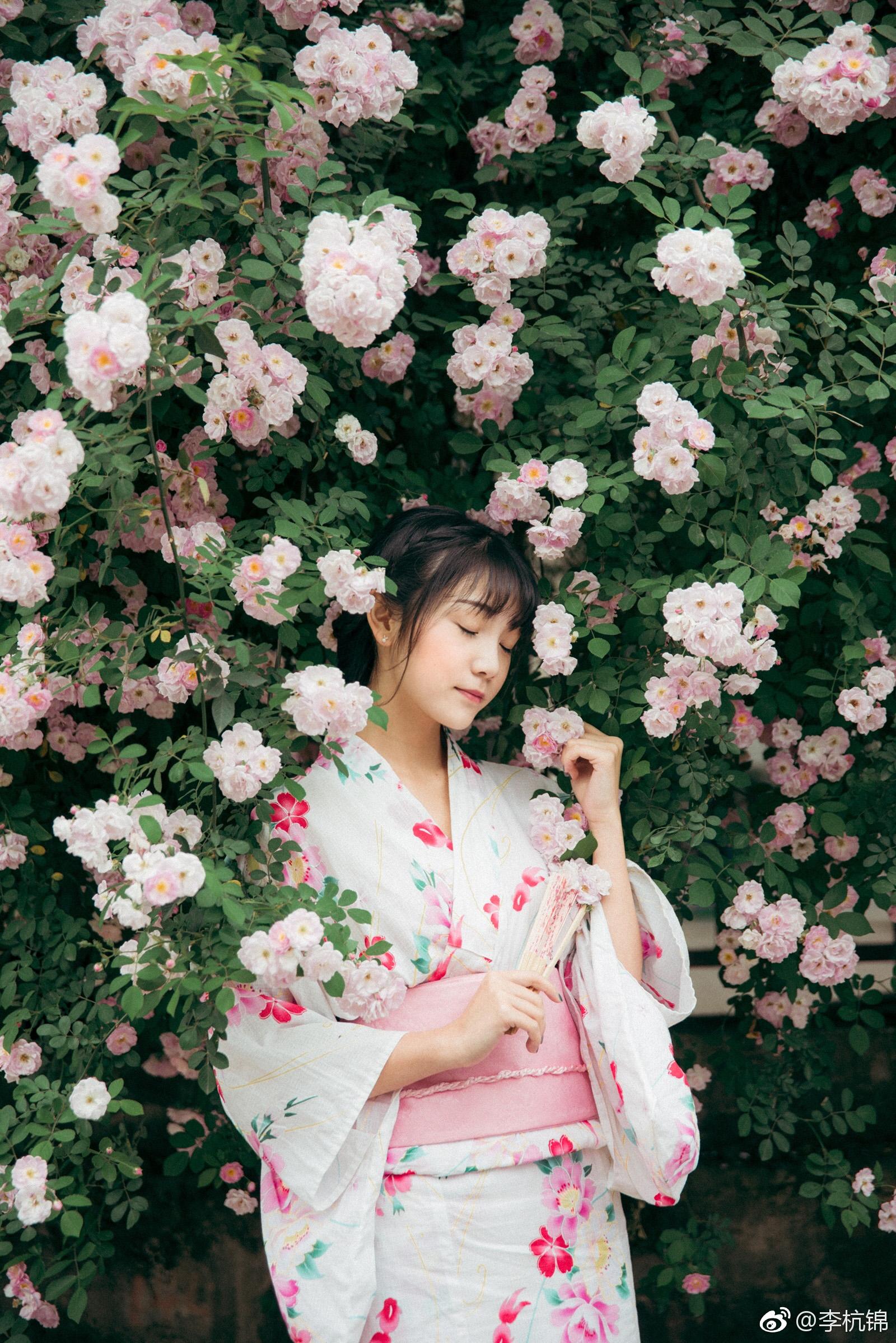 蔷薇与你插图6