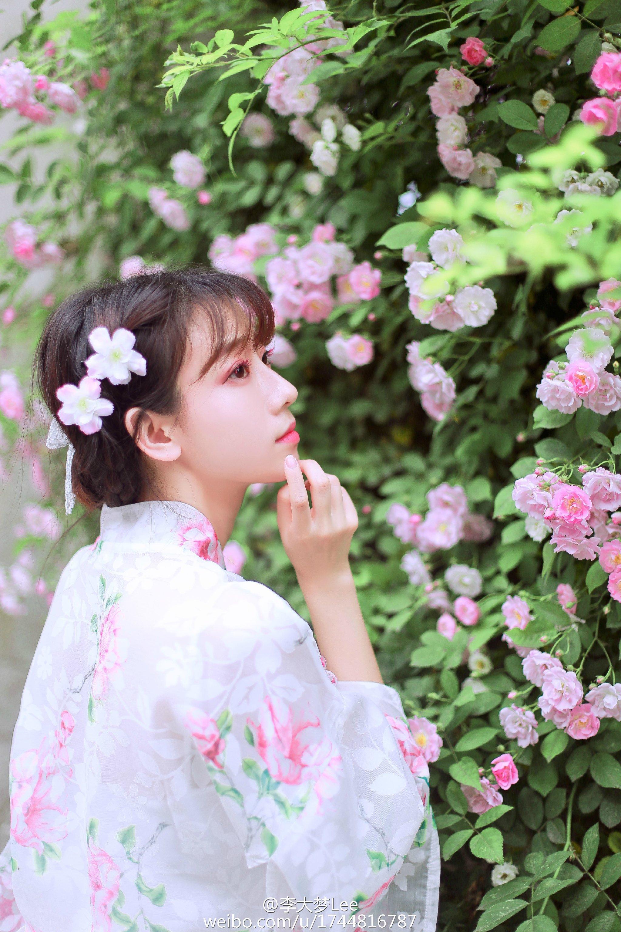 云想衣裳花想容、春风拂槛露华浓。