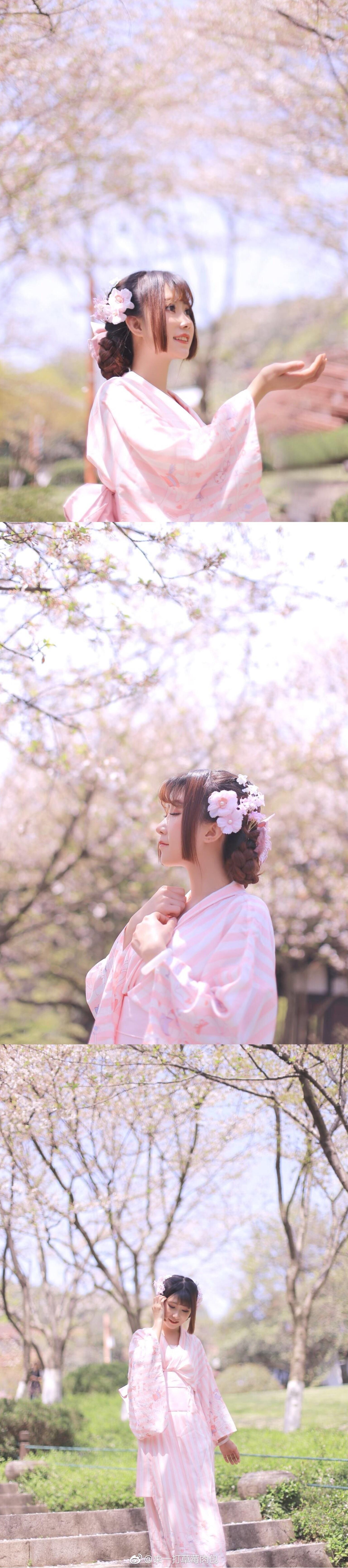 花瓣轻轻抚过你的侧脸插图4