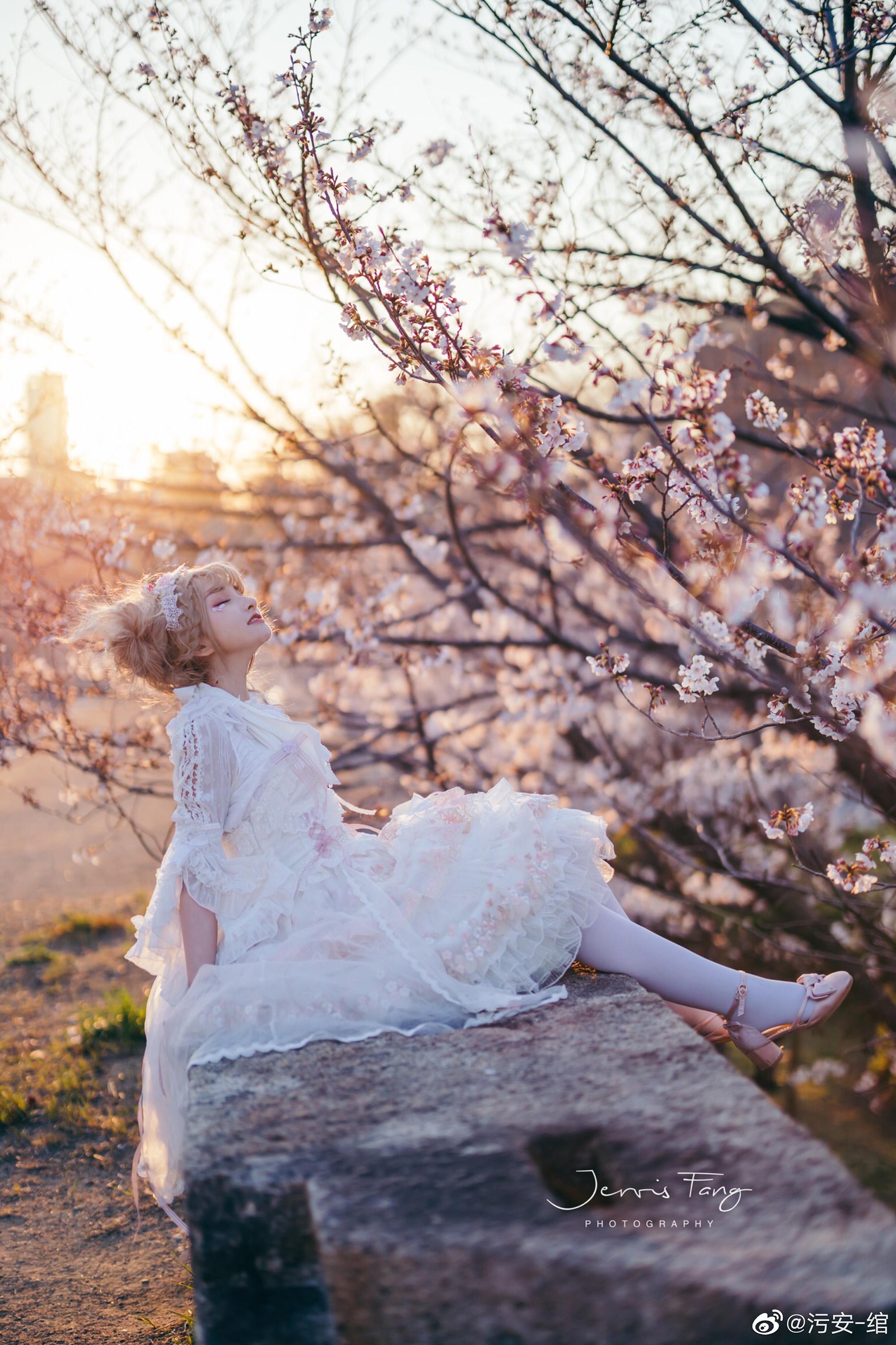 夕阳 •  城墙 • 樱花 • 日落插图8