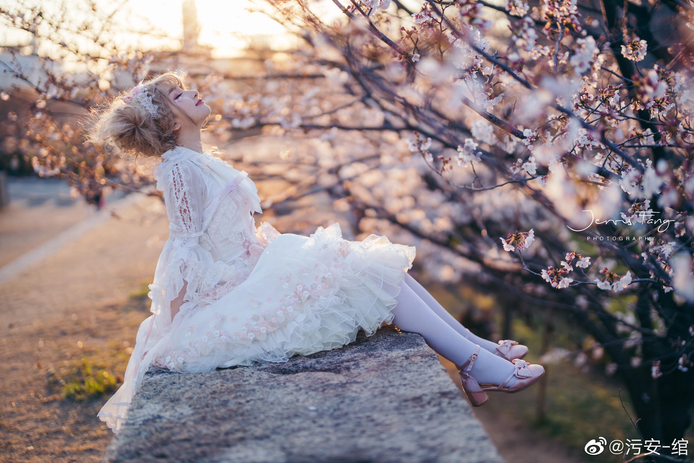 夕阳 •  城墙 • 樱花 • 日落插图5
