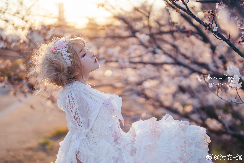 夕阳 •  城墙 • 樱花 • 日落插图3