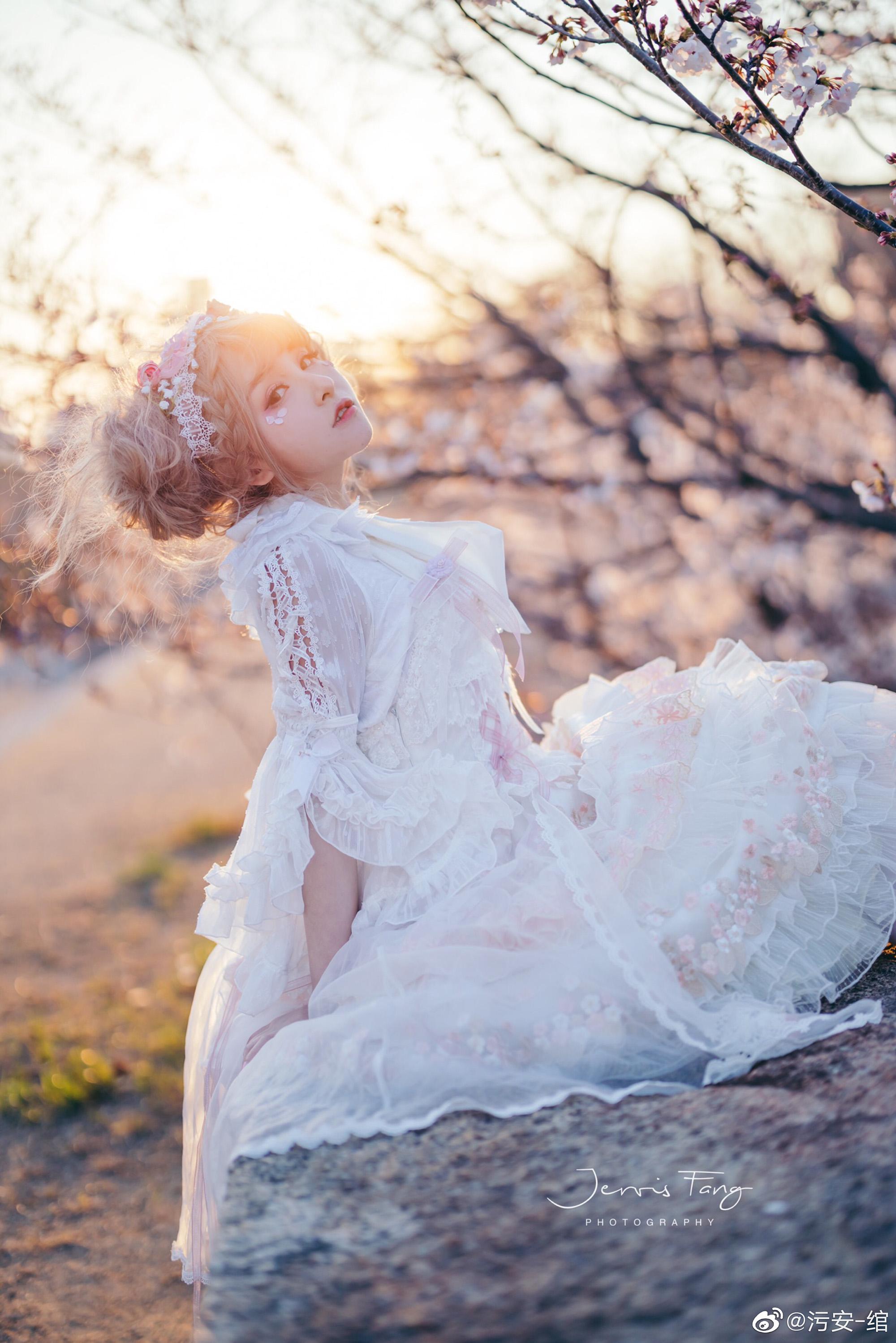 夕阳 •  城墙 • 樱花 • 日落插图1