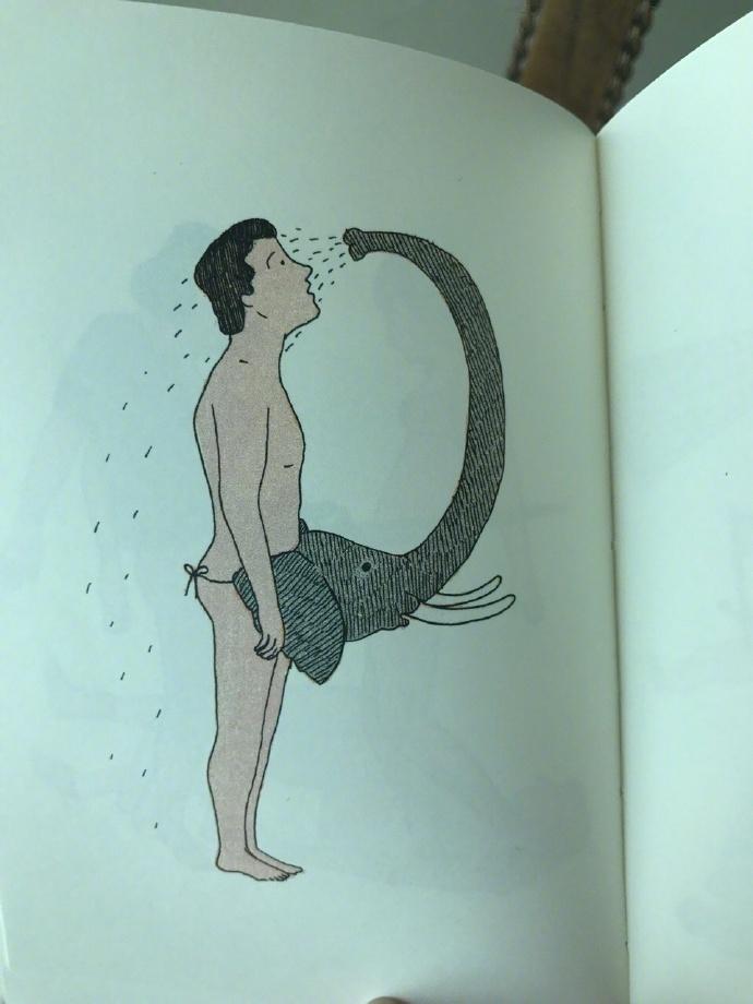 谁能告诉我,这本来自西班牙的书到底想表达什么?
