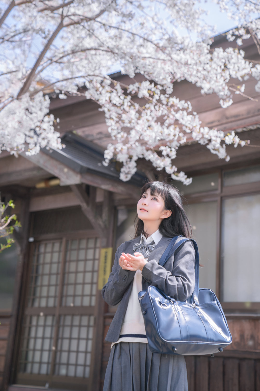 公主日记云赏樱花...