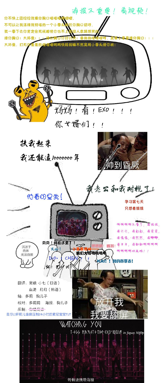 170129 EXO日本三巡DVD 全場中字