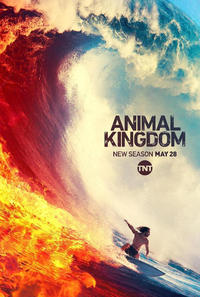 野獸家族 第四季 Animal Kingdom Season 4
