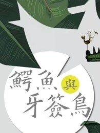 鳄鱼与牙签鸟DVD版