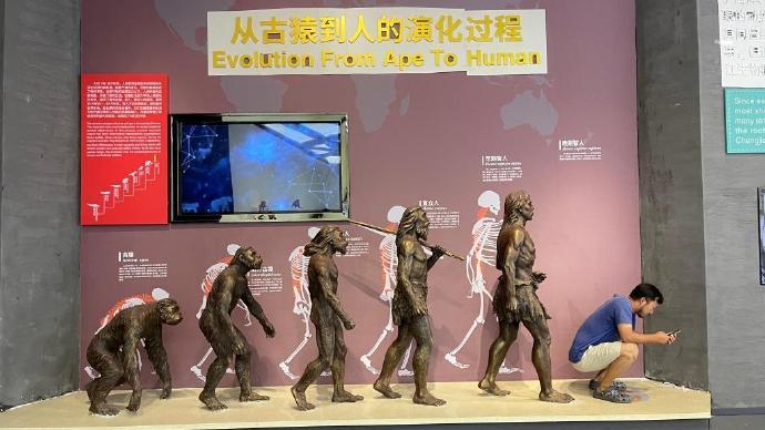 [博海拾贝0728]人类进化终点竟是水猴子